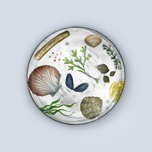 Multi Mollusks Coaster